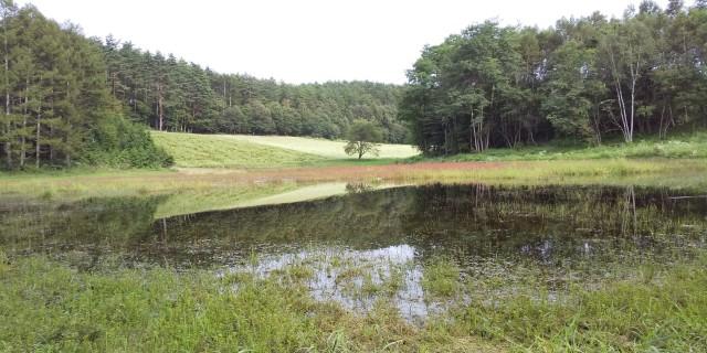 9.7 幻の池