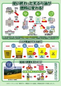 bdf_leaflet