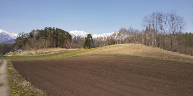 今日の中山高原