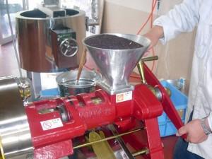 焙煎・搾油作業